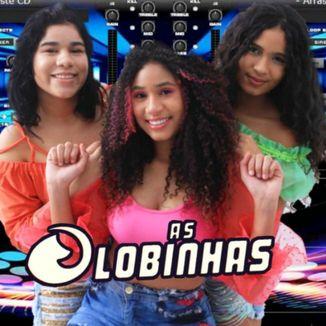Foto da capa: As Lobinhas