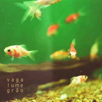 Foto da capa: vaga-lume-grão