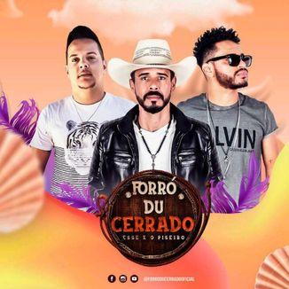 Foto da capa: FORRO DU CERRADO 2021