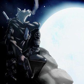 Foto da capa: O Lobo e a Lua ( Parte 2 )