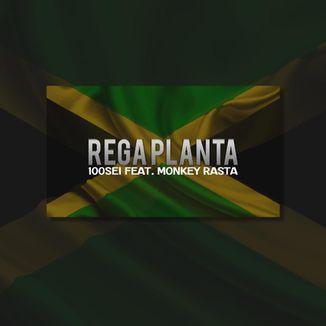 Foto da capa: Regga Planta