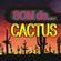 Imagem de Som de Cactus
