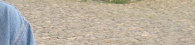 Waldir Damasceno