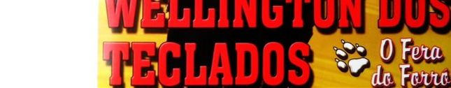 Wellington Dos Teclados