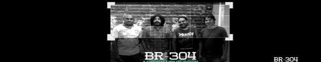 BR-304
