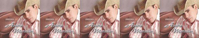 Os Amigos Cantam Sucessos de André Moralles