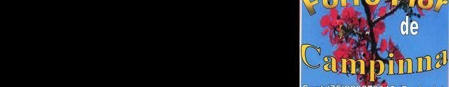 FLOR DE CAMPINNA