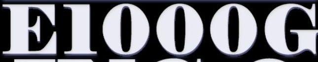 E1000G INC
