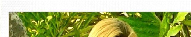 lúh rondonia e marcelo