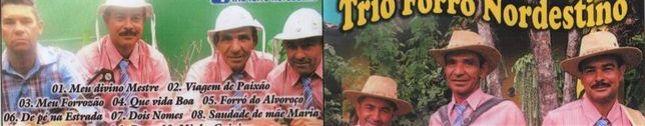 Trio Forró Nordestino
