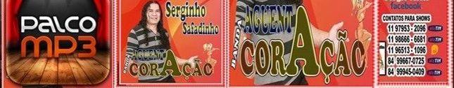 SERGINHO SAFADINHO BANDA AGUENTA CO