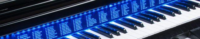 harnaldo dos teclados