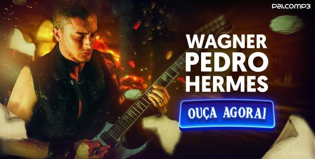 Wagner Pedro Hermes