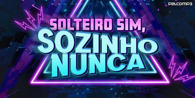 Imagem da playlist Solteiro sim, sozinho nunca