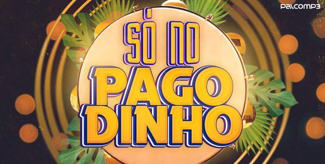 Imagem da playlist Só no pagodinho
