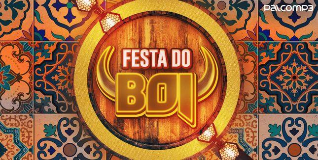 Imagem da playlist Festa do boi
