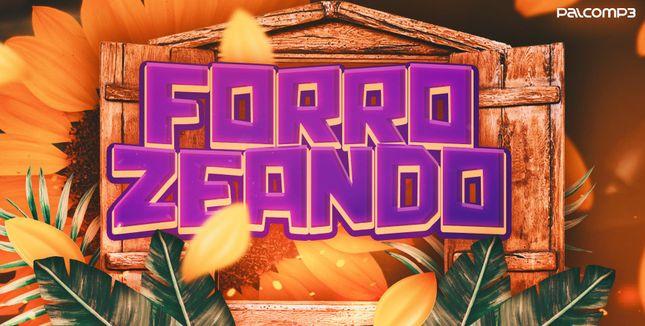 Imagem da playlist Forrozeando