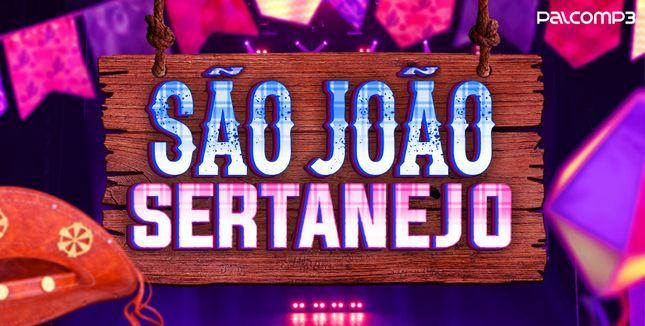 Imagem da playlist São João Sertanejo
