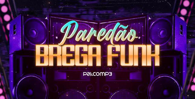 Imagem da playlist Paredão brega funk
