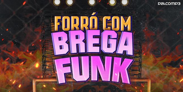 Imagem da playlist Forró com brega funk