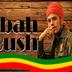 Zabah Bush