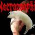 Necrozoophilia