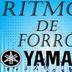 ROBERTINHO RITMOS 3
