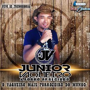 JUNIOR VAQUEIRO(oficial)