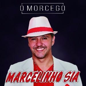 Marcelinho S/A