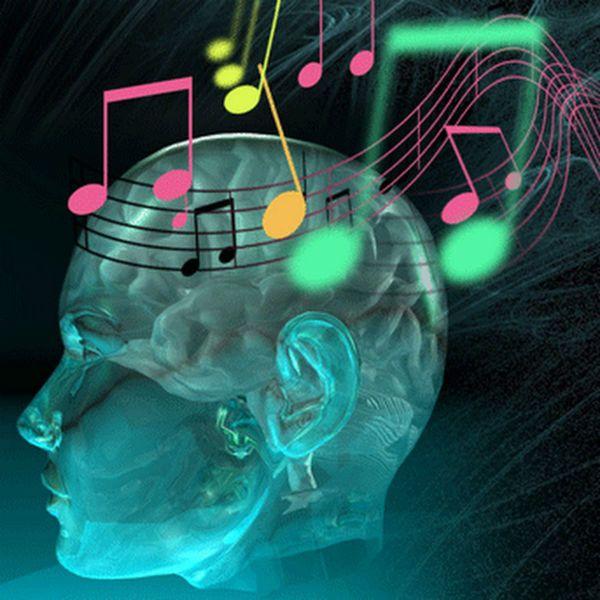 A percepção musical é uma linguagem que precisa ser bastante estuda