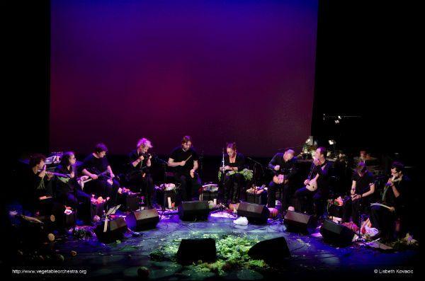 The Vegetable Orchestra apresenta sua música feita com vegetais durante concerto
