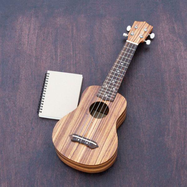 Ukulele e um caderno de anotações https://br.freepik.com/fotos-gratis/o-ukulele-com-o-notebook_1131752.htm