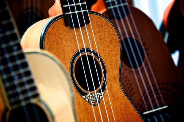 Três modelos de ukulele