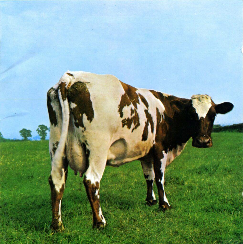 Capa do álbum Atom Heart Mother