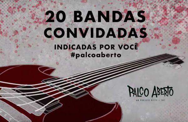 Pitty lança ótima iniciativa para a música indenpendente brasileira.