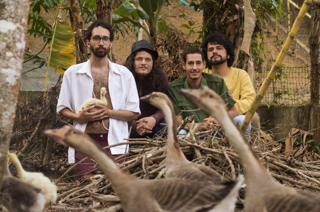 Banda Dom Pescoço lança novo disco, Chucro