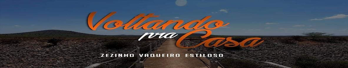 Imagem de capa de Zezinho Vaqueiro