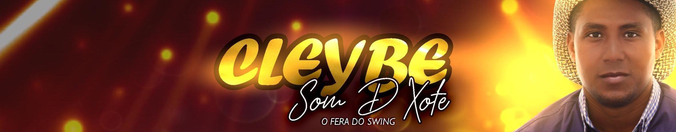 Imagem de capa de Cleybe som D Xote