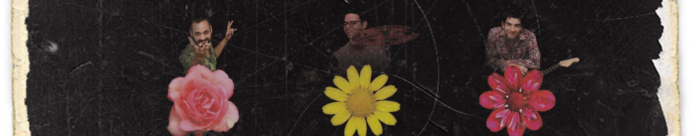 Imagem de capa de Flavinho, Levindo e Santinho