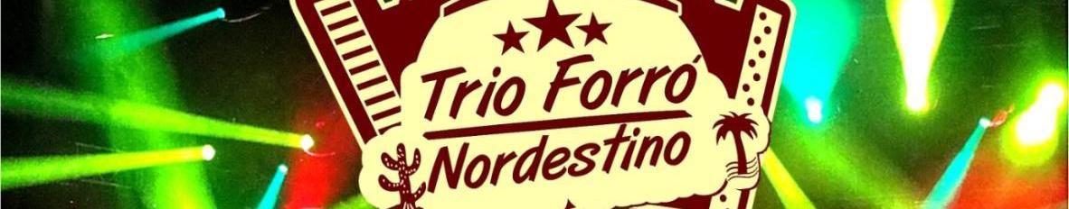 Imagem de capa de Trio Forró Nordestino