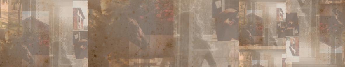 Imagem de capa de martiscool