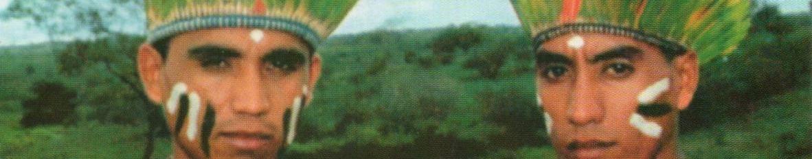 Imagem de capa de Rey & Reynaldo