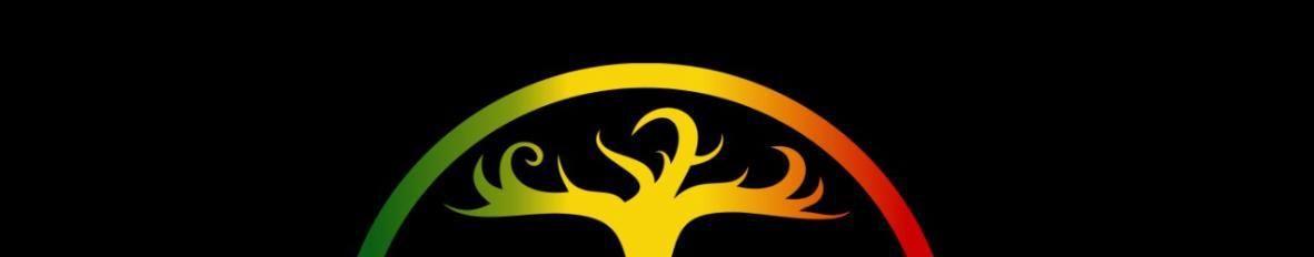 Imagem de capa de Shalom Roots