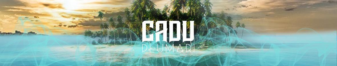 Imagem de capa de Plumari