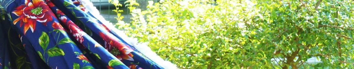Imagem de capa de Banda Encante