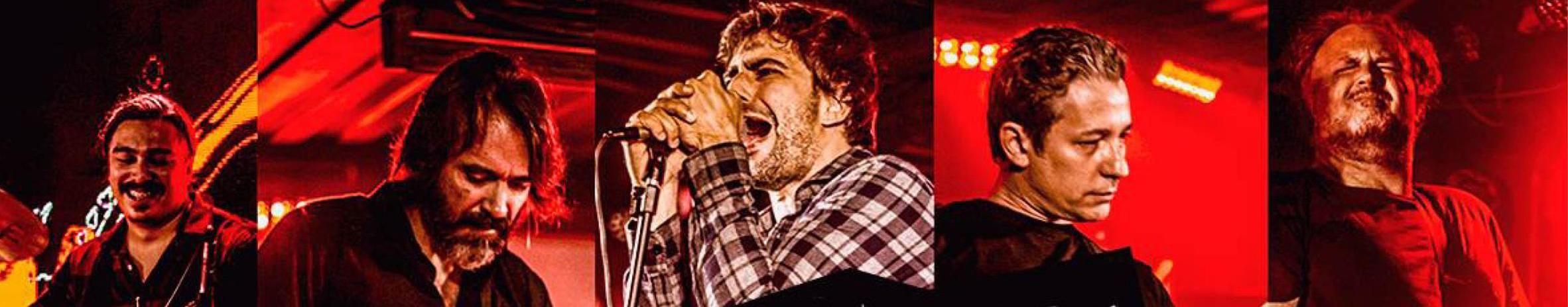Imagem de capa de Banda Strauss