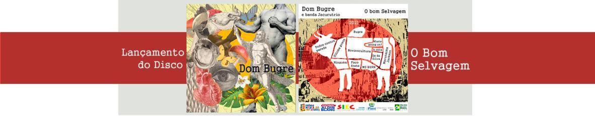 Imagem de capa de Dom Bugre