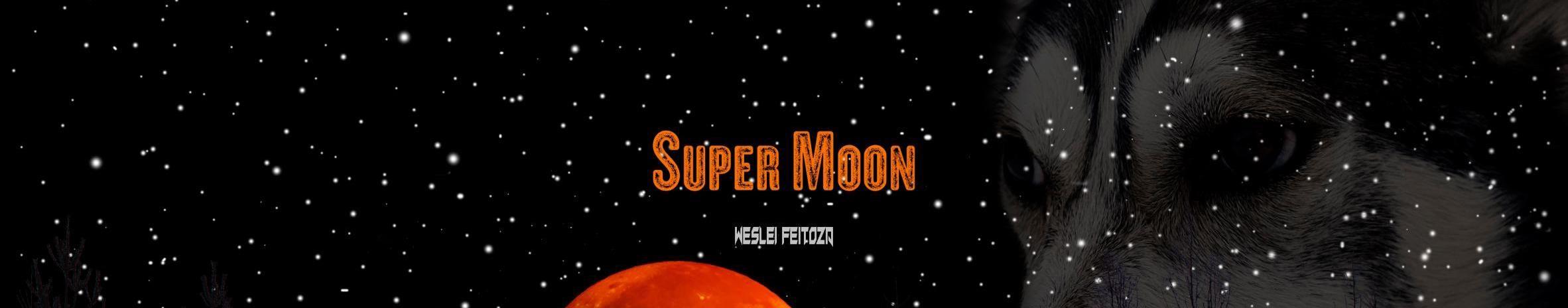 Imagem de capa de Weslei Feitoza