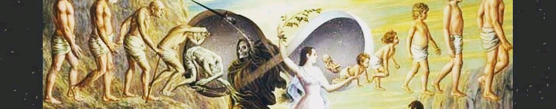 Imagem de capa de Espécime 19