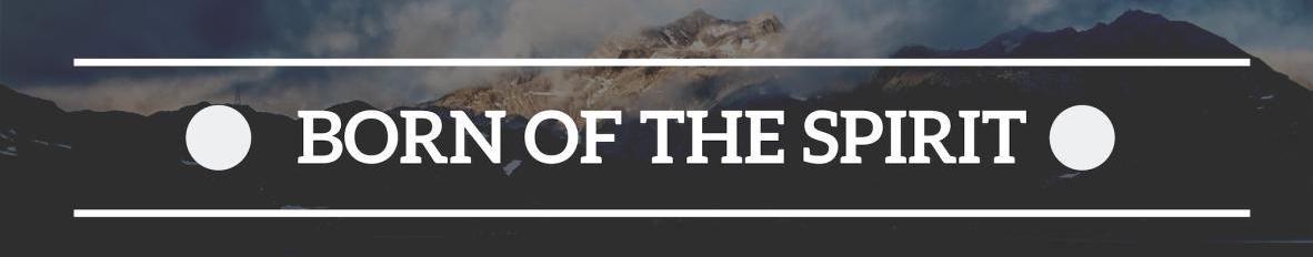 Imagem de capa de Born of The Spirit